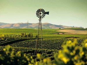 farming in california