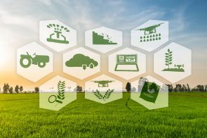 farming with digital technology