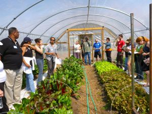 Urban farming at Howard University