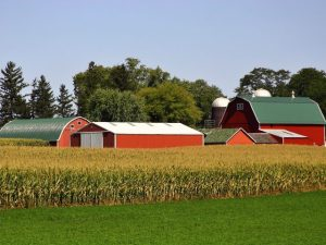 Michigan Agriculture News